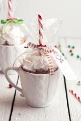 Cocoa in a mug