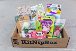Kitnip box
